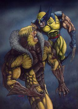 Wolverine Vs Sabretooth by FenrizWolf