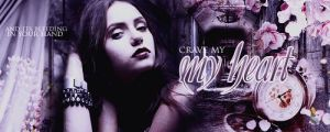 the vampire diaries banner 2 by mia47