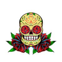 Sugar skull 3 by xfreakcorex