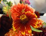Flowers at Pike Place by napoland