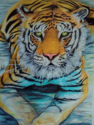 Bengal tiger in water  by Kentcharm