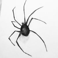 Spider by bambimilk