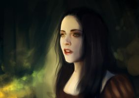 Snow White and the Huntsman by lizavanrees