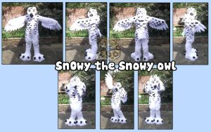 Snowy owl by SnowGryphonSuits