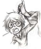 Harry Potter Re-sub by curry23