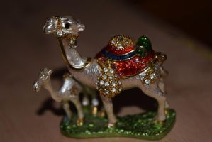 Camel by cheaterboy-A