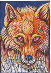 ACEO- Fox by Septimosis