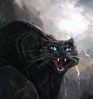 Crowfeather's Storm by Ospreyghost13