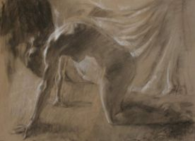 Charcoal Nude by roughin