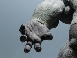 Rhino Sculpture 10 - left hand (detail) by loqura