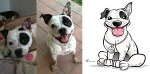 Staffy Dog Caricature with Photo by timmcfarlin