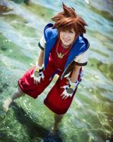 Our hearts will blend -KH1 by Figgarow