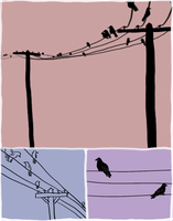 birds on wires by Sparrf