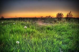HDR Sunset by Deaddoll666