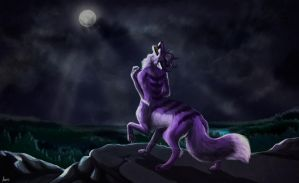 Fullmoon by Anerris