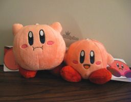 Double Kirby by Toadychan