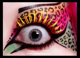 . kitty eye . by Countess-Grotesque