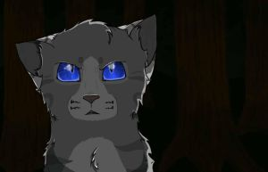 Ivypool: You can't hurt me anymore! by Drawing--Skies