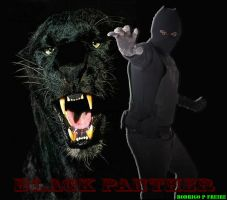 Panther's attack. by brazilking