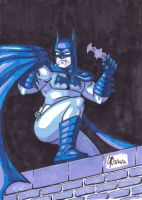 The Batman in Blue by JasonRocket