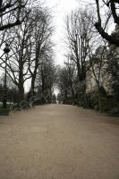 path way paris by FFFPhotography