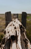 Old fence by skadieverwinter