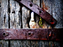 Beyond the Locked Doors by MechanicalButterfly0