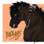 .:Akkan commission:. by Eauzy