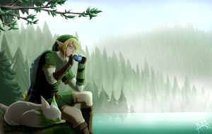 [COMMISSION] Legend of Zelda by AquaWaters