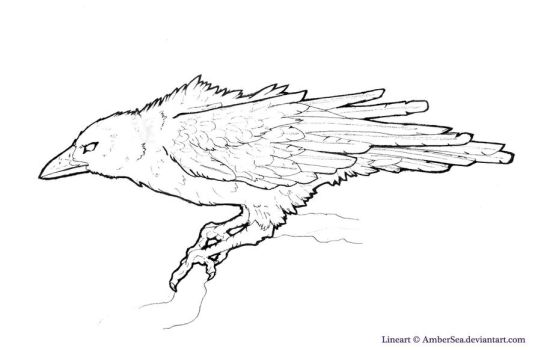 Raven-Crow Free Lineart by AmberSea