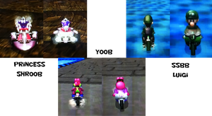 Some new MKW textures! by babyluigi957