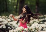 concert for flowers by baravavrova