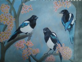 Magpies in Blossom by PicaPicaMagpie