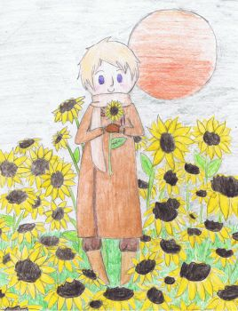 Obvious RussiaAndSunflower pic by giantsnail