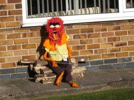 day out haxby by kk20152d