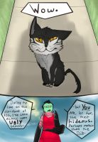 Look a cat by Hobo-Nikki