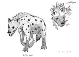Hyenas by Jeis