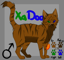 .:XaDoo:. New RefSheet by oOJurOo