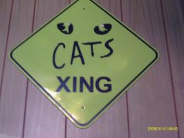 CATS Xing by HectorNY