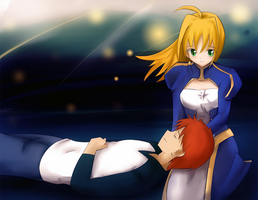 Fate Stay Night - at the end by rifuu