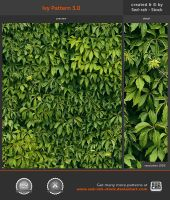 Ivy Pattern 3.0 by Sed-rah-Stock
