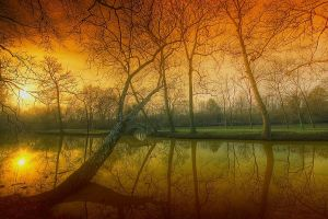 Reflection of a soul by lowapproach