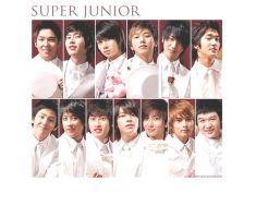 Super Junior Wallpaper by browneyedfairy23