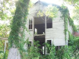 Abandoned house with vines by micheleoxton