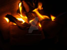 burning book pages .2. by kittykatty89