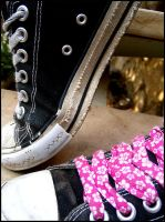 2 Steps by S-iS-i