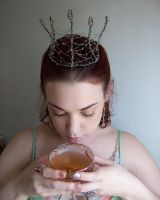 Faerie Crown IV by fetishfaerie-stock