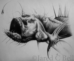 Hairy Angler Fish by JaredCBell