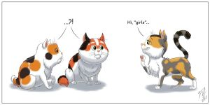 Of Calico Kitties by Goldy--Gry