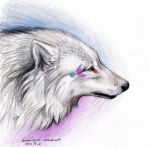 Moon White Wolf by NatsumeWolf